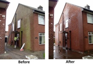 Brick and Stone Moss Removal Services by Cleanpoint Restoration at cleanpointrestoration.com