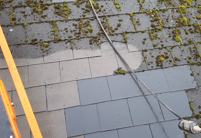 Cleanpoint Restoration Moss Removal